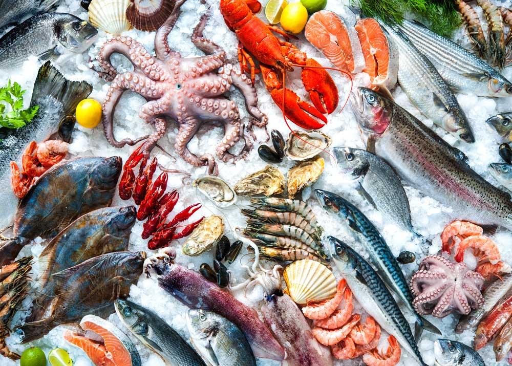Обзор отрасли переработки рыбы и морепродуктов в России