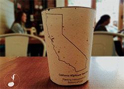 Бизнес идея №5219. Биоразлагаемые стаканчики для кофе с семенами растений