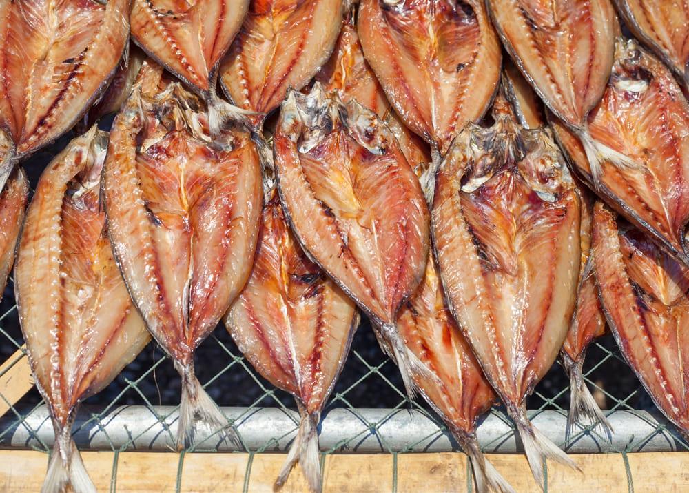 Магазин рыба бизнес план бизнес план бара бесплатно