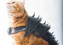 Бизнес идея №5727. Рыцарские доспехи для кота из 3D принтера