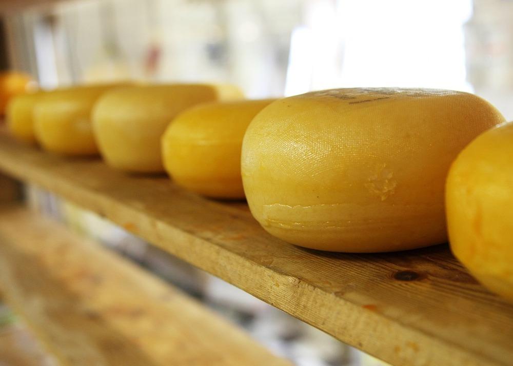 Бизнес на сыроварении в домашних условиях — как открыть сыроварню с нуля