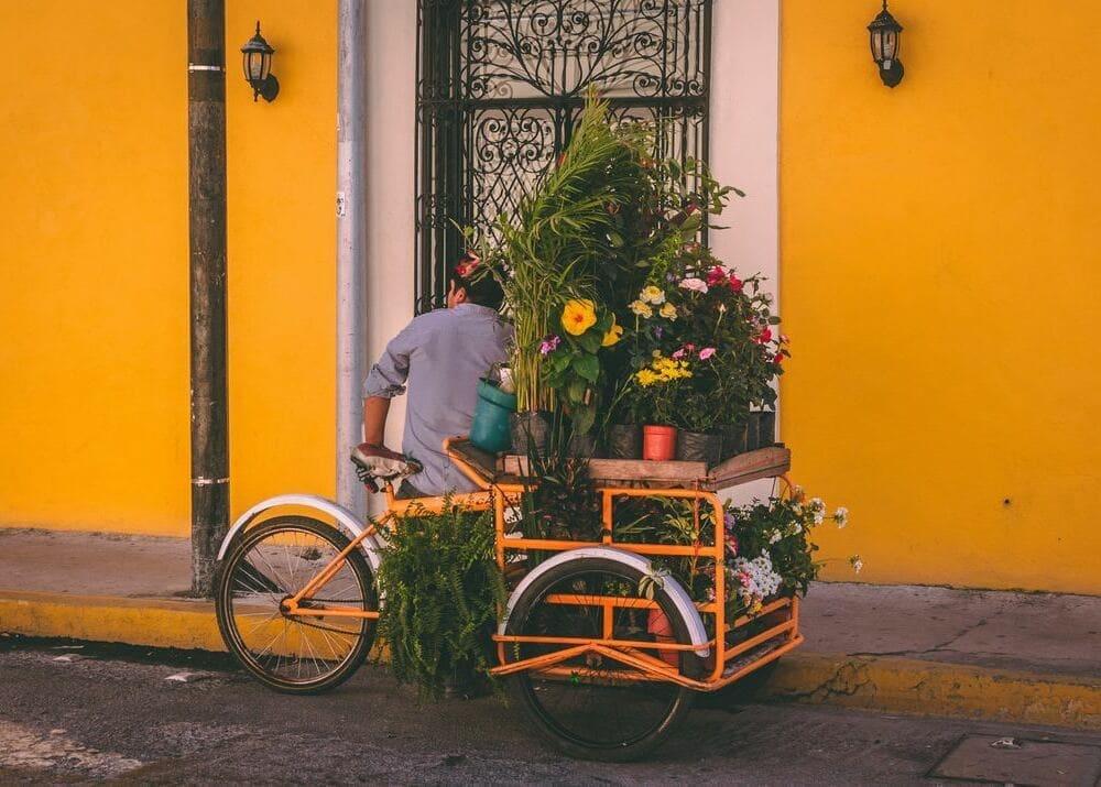 В стиле стритфуда 15 бизнес идей по продаже уличной еды