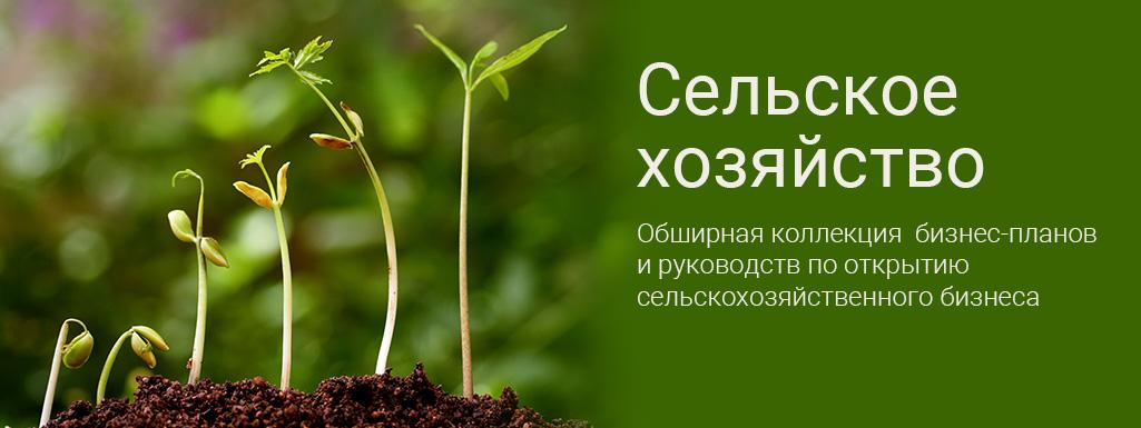 Бизнес На Оленях - Блог фермера