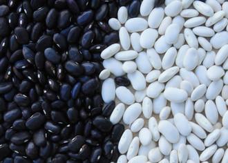 Выращивание бобовых культур как бизнес
