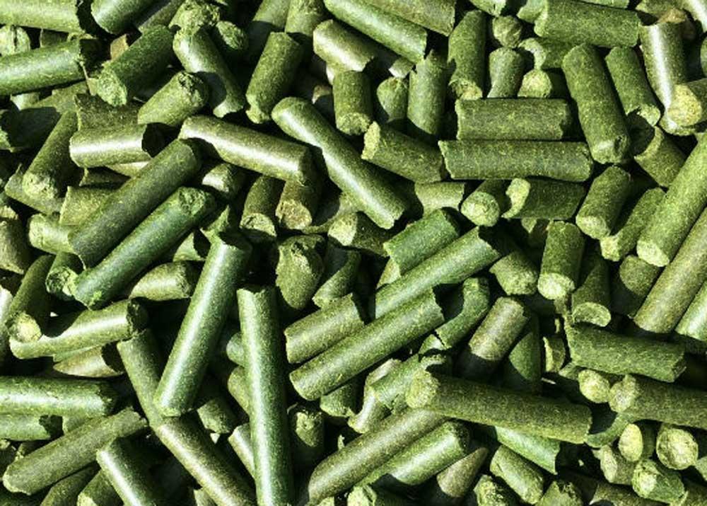 Свой бизнес: производство травяной муки и травяных гранул