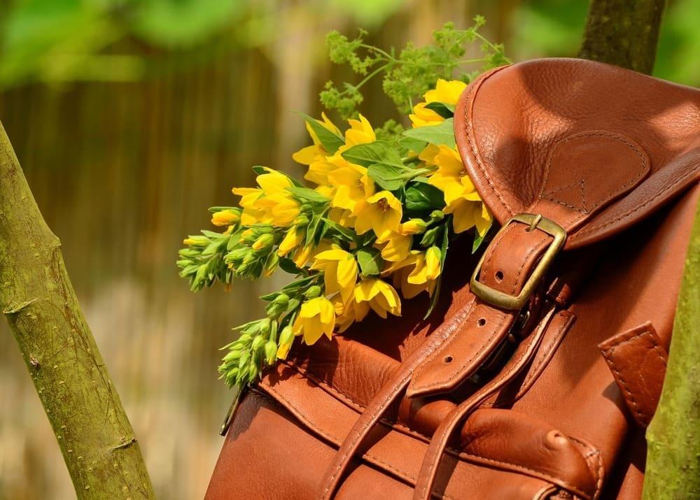 Бизнес-план интернет-магазина рюкзаков