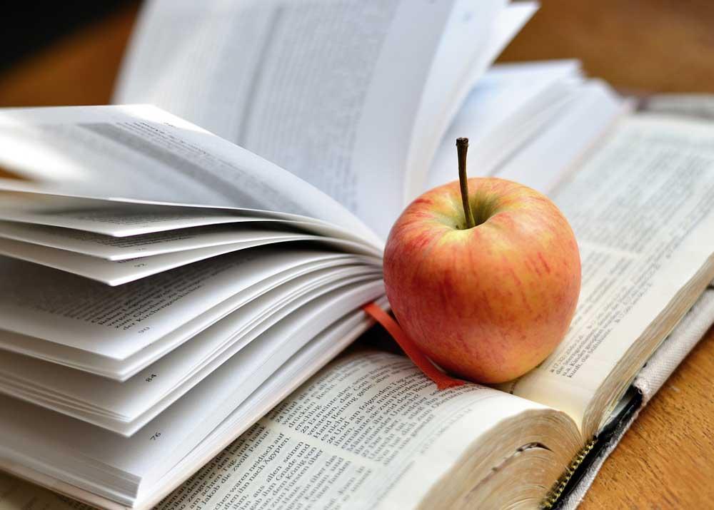 Полезный бизнес: как заработать на образовании