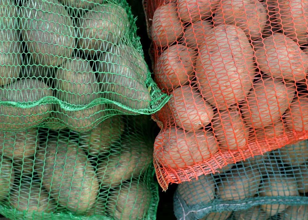 Производство овощной сетки