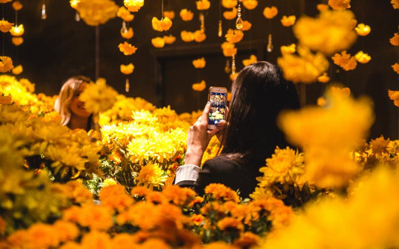 Сам себе фотограф: как заработать на селфи