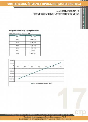 Финансовые расчеты: минипивоварня производительностью 1000 литров в сутки